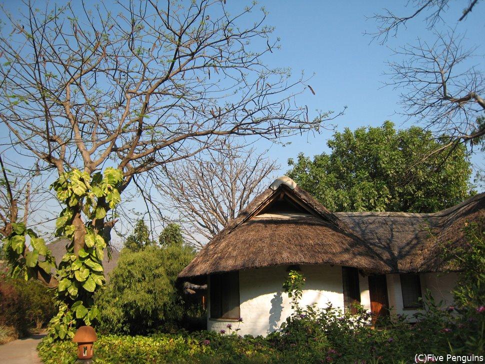 マンゴチのホテル・クラブマココラ