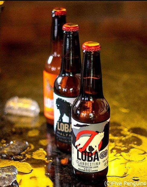 日本同様、メキシコでも国内のクラフトビールが大人気