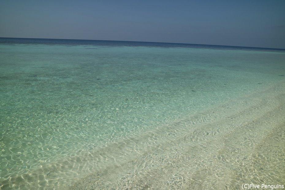 驚くほど透明な海