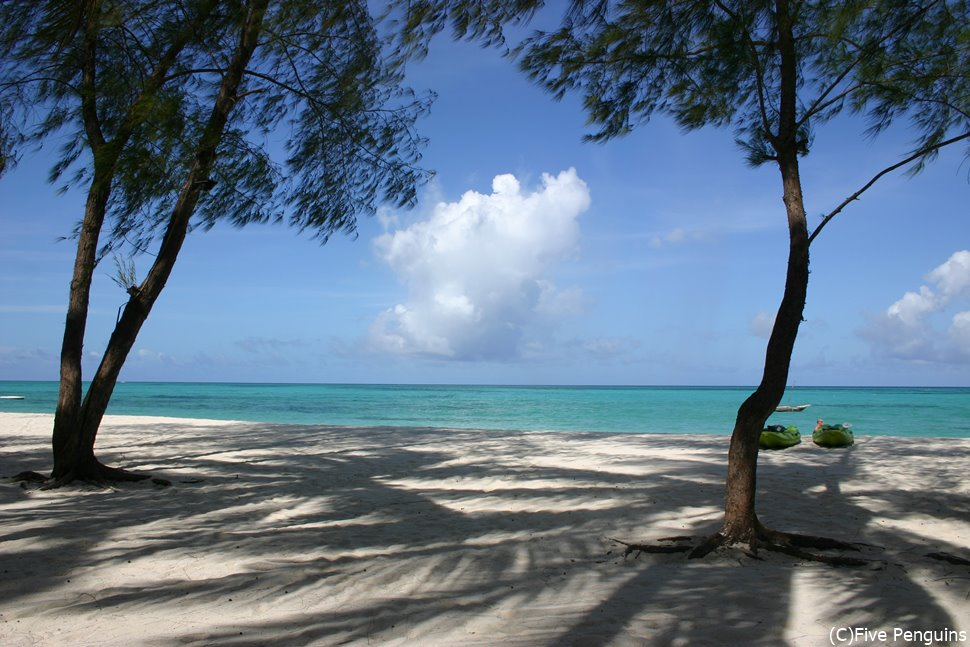 東海岸のビーチ