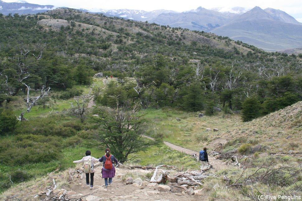 ミラドール・トーレスへのハイキングの下りの道中