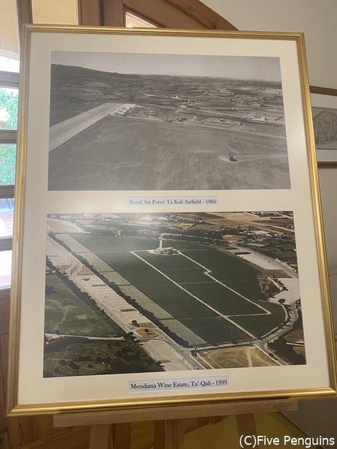 かつての飛行場は、今はワイン畑と変わりました。
