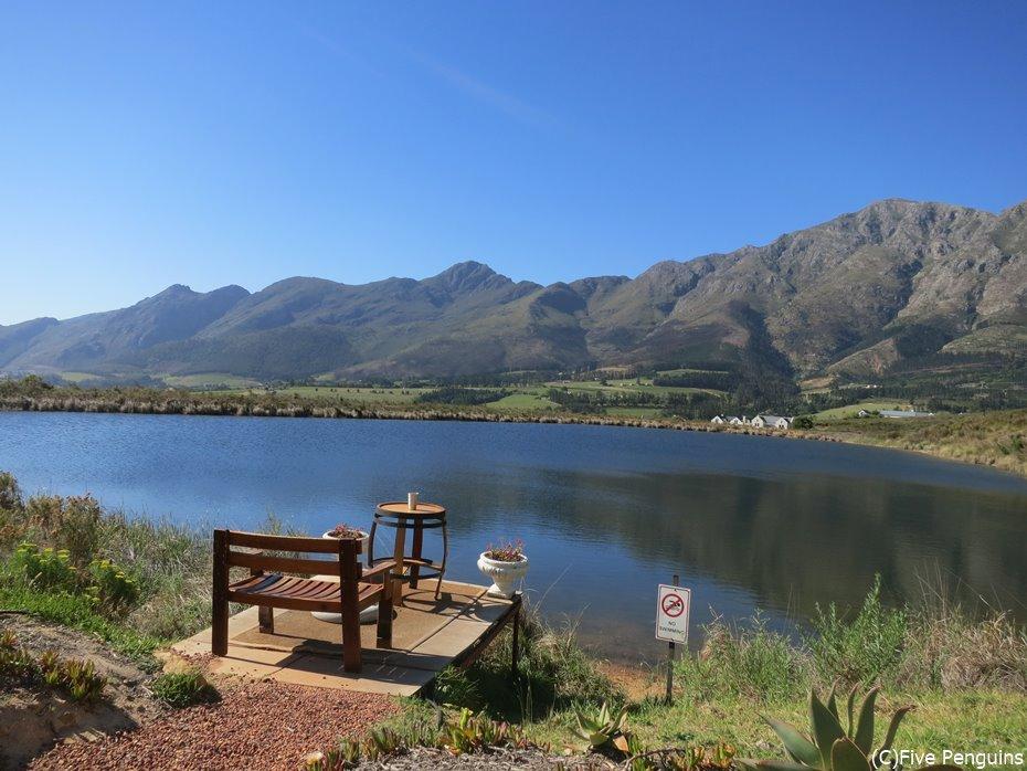 大自然の中でワインが楽しめる南アフリカ