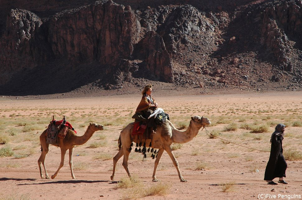 ラクダに乗って冒険の旅へ!