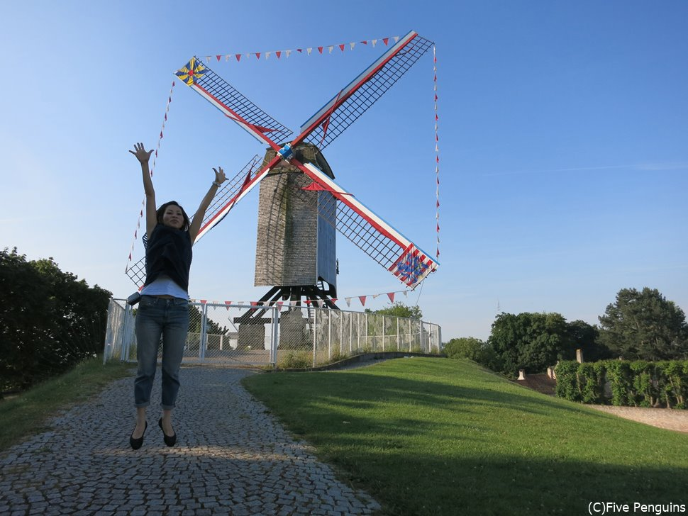 天気の良い日は運河沿いの風車をのんびり眺めてみては?