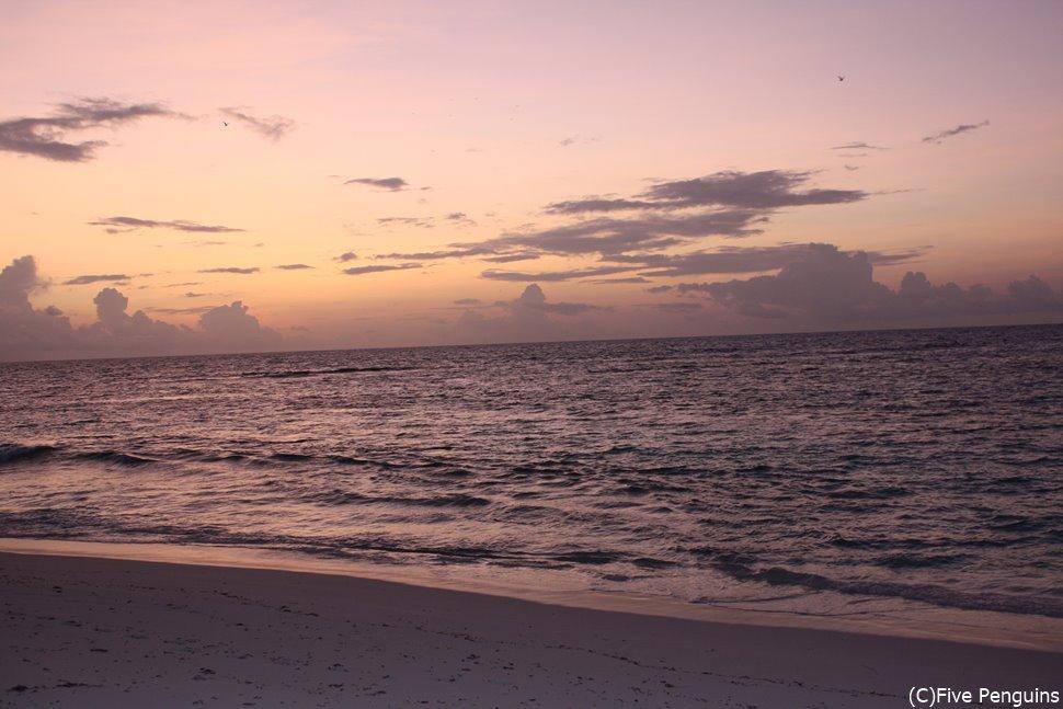 バード島のビーチにて 夕暮れはいつも美しい