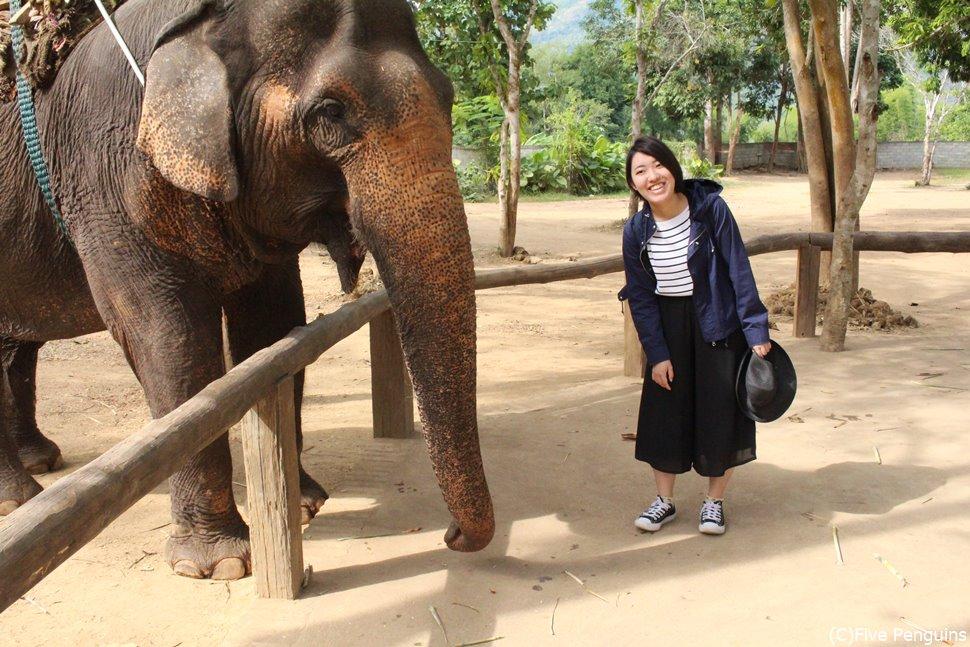 象乗りチャレンジもしてみたい!途中で餌を食べだしたり超マイペース。