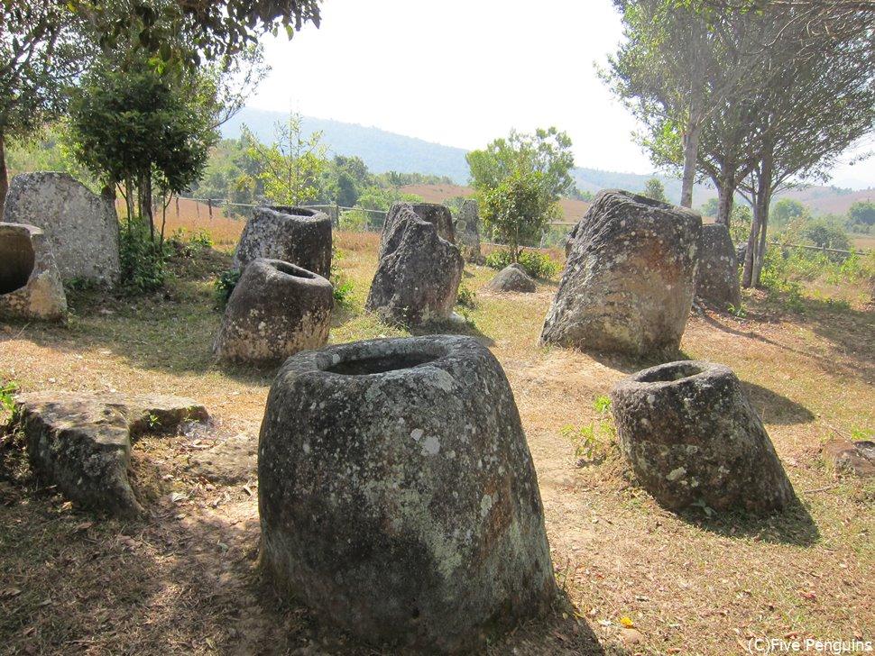 一帯に広がる石壺。どうやって作って運んだのか…謎に包まれています。