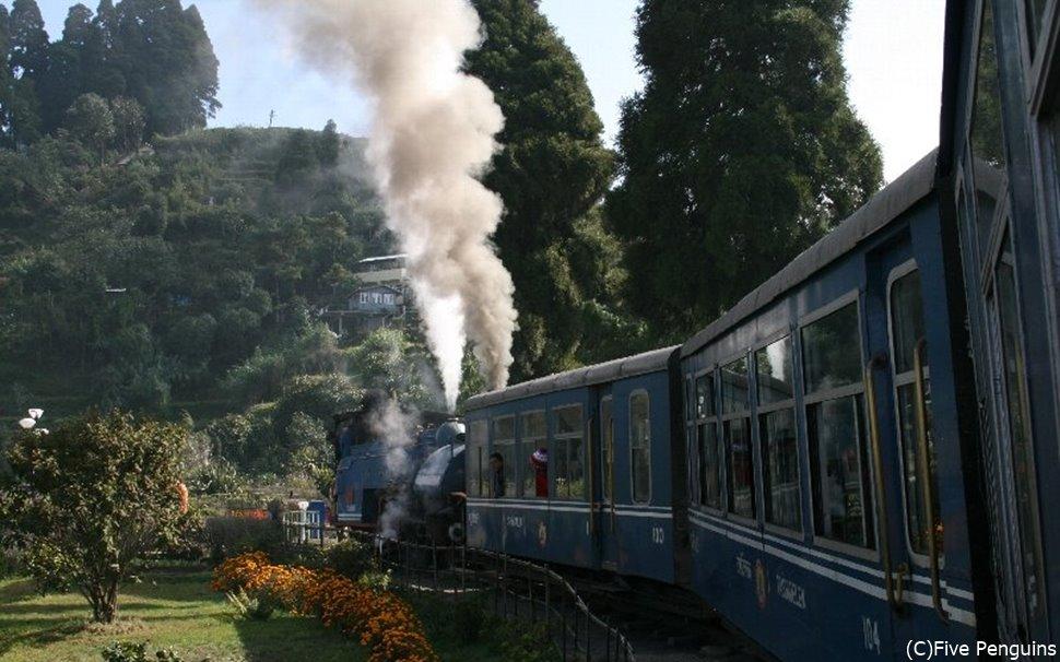 貴重な機関車トイトレイン