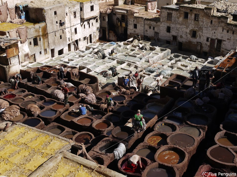 タンネリ・革染色職人街(フェズ/モロッコ)