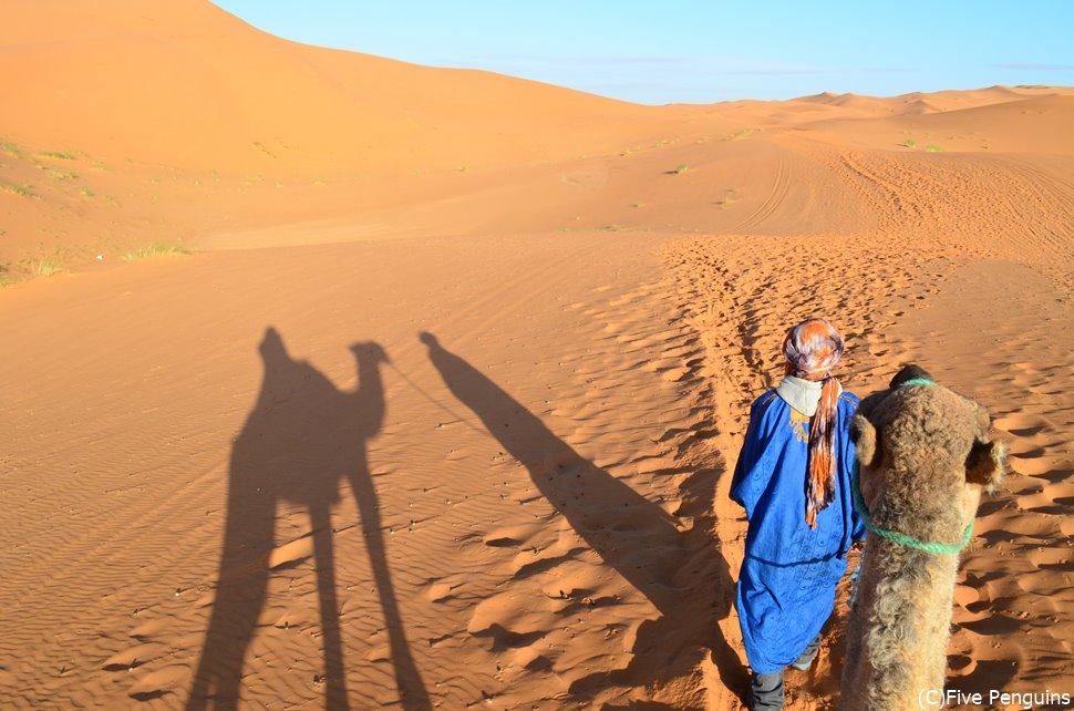 ラクダに乗ってサハラ砂漠のど真ん中へ(モロッコ)