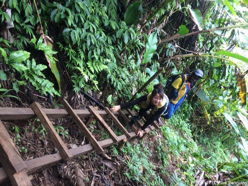 本格的なジャングル探検が楽しめるミレニアムケーブツアー