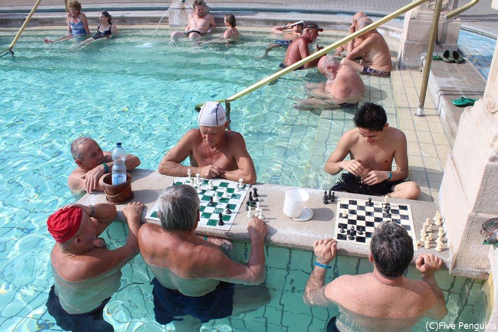 チェスのできるセーチェニ温泉(ブダペスト)