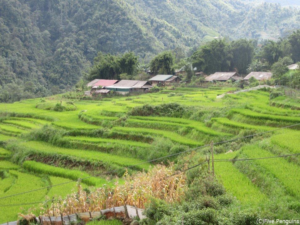 長閑な風景の広がるシンチャイ村/トレッキングが楽しい