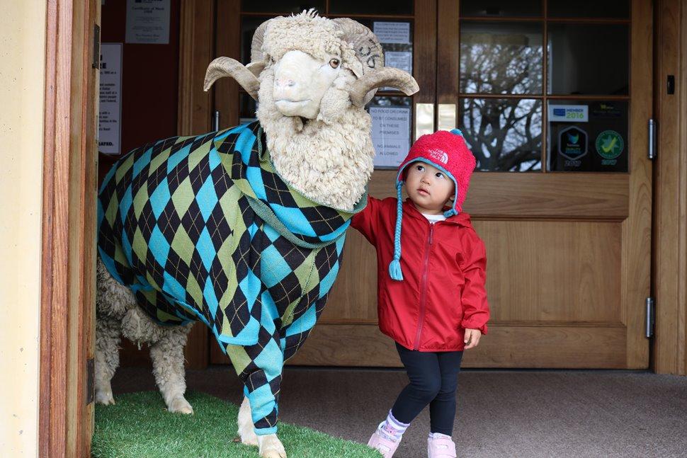 ロスビレッジにあるタスマニアンウールセンターの羊の剥製と